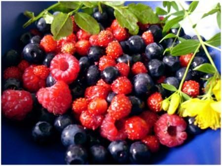 Frutti di bosco contro il morbo di Parkinson